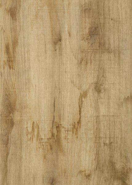 »Figura Oak«. Bild: Continental